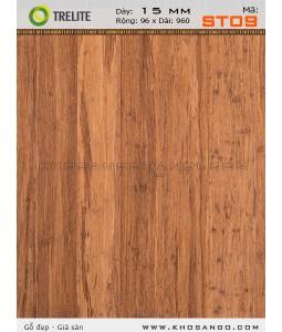 Sàn gỗ Tre ST09
