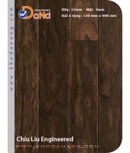 Chiu liu Dana Engineered