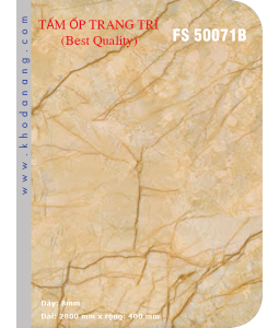 Tấm ốp giả đá FS 50071B